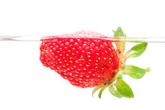 Strawberry swim in water Stock Images