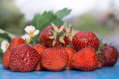 Strawberry. On the table nature Stock Photos