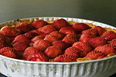 baked strawberry tart Royalty Free Stock Photo