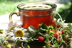 Strawberry tea Stock Photography