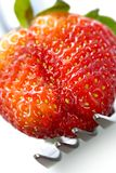 Strawberry temptation Royalty Free Stock Photography