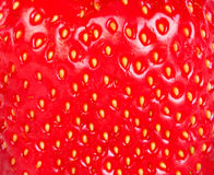 Strawberry texture Stock Photography