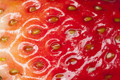 Strawberry texture. Close up of red shiny strawberry showing texture Royalty Free Stock Photos