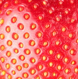 Strawberry texure. Stock Photography