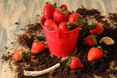 Strawberry in a tiny red metal pail. Fresh strawberries in tiny red metal pail Royalty Free Stock Images