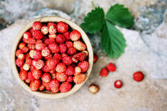strawberry, top view Royalty Free Stock Photos
