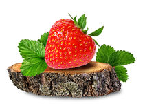 Strawberry on a tree stump isolated on white Royalty Free Stock Photos