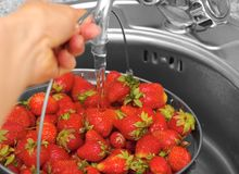 Strawberry under current water Stock Photography