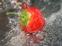 Strawberry under running water Stock Photography