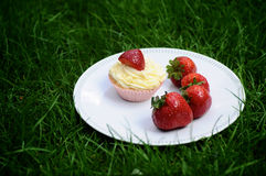 Strawberry and Vanilla Cupcakes on Grass. Strawberry and Vanilla Cream Cupcakes with fresh strawberries on top on a white plate on dark green grass Stock Photos