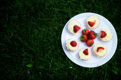 Strawberry and Vanilla Cupcakes on Grass. Strawberry and Vanilla Cream Cupcakes with fresh strawberries on top on a white plate on dark green grass Royalty Free Stock Photography