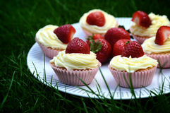 Strawberry and Vanilla Cupcakes on Grass. Strawberry and Vanilla Cream Cupcakes with fresh strawberries on top on a white plate on dark green grass Stock Images
