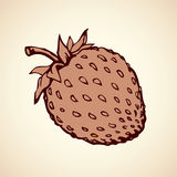 Strawberry. Vector drawing Royalty Free Stock Images
