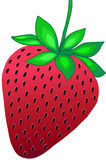 Strawberry Vector Illustration. Strawberry Fruit Vector Illustration with gradients Stock Photos