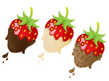 Strawberry vector illustration. Vector illustration of different strawberry Royalty Free Stock Photography