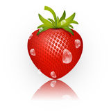 Strawberry Vector Illustration Isolated on White Stock Images