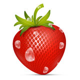 Strawberry Vector Illustration Royalty Free Stock Images