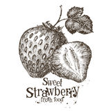 Strawberry vector logo design template. fresh Royalty Free Stock Images