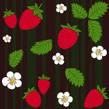 Strawberry vector pattern. Berries background Stock Photography
