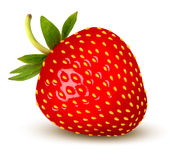 Strawberry. Vector. royalty free illustration