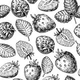 Strawberry vector seamless pattern drawing. Isolated hand drawn vector illustration
