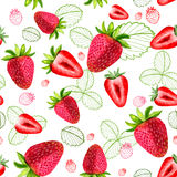 Strawberry vector seamless patterns. Sliced fruit and leaves painted with watercolors on white background royalty free illustration