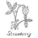 Strawberry vector, strawberry zen doodle. Black and white. Royalty Free Stock Image