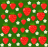 Strawberry vector texture. Strawberry background - flowers and fruits.  Vector illustration Stock Photo