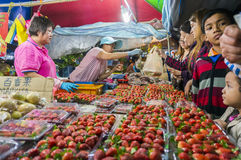 Strawberry vendor Royalty Free Stock Photo