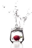 Strawberry very big splash Royalty Free Stock Photo