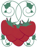 Strawberry Vine Royalty Free Stock Photography