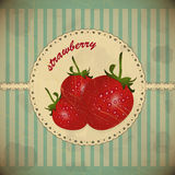Strawberry vintage card Stock Images