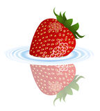 Strawberry in the water Royalty Free Stock Images