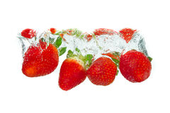 Strawberry in the water Stock Images
