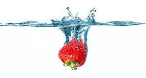 Strawberry in the water Stock Photography