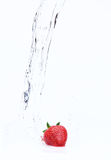 Strawberry with water. Red strawberry in flowing water on white background Royalty Free Stock Photo