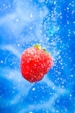 Strawberry in a water splash. Strawberries dropping ina splash of water drops royalty free stock photos