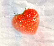 Strawberry on watercolor paper Royalty Free Stock Image