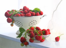 Strawberry in a wattled cup on a white window sill. Fresh strawberry royalty free stock images