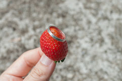Strawberry. Wedding rings of love on strawberry Stock Images