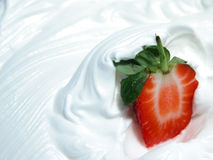 Strawberry on whip Stock Photos