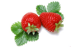 Strawberry on white Royalty Free Stock Photos