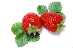 Strawberry on white. Strawberry on isolated background white Royalty Free Stock Photos