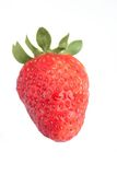 Strawberry on white background Royalty Free Stock Image