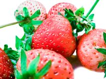 The strawberry. With white background royalty free stock images