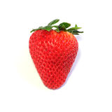 Strawberry on white background Royalty Free Stock Photography