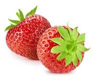 Strawberry on white royalty free stock photo