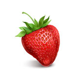 Strawberry. On white background vector illustration