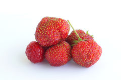Strawberry on a white background. Stock Image