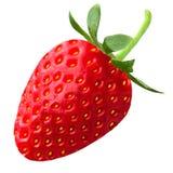 Strawberry on white background. Isolated fruits. Strawberry isolated on white background as package design element royalty free stock photos